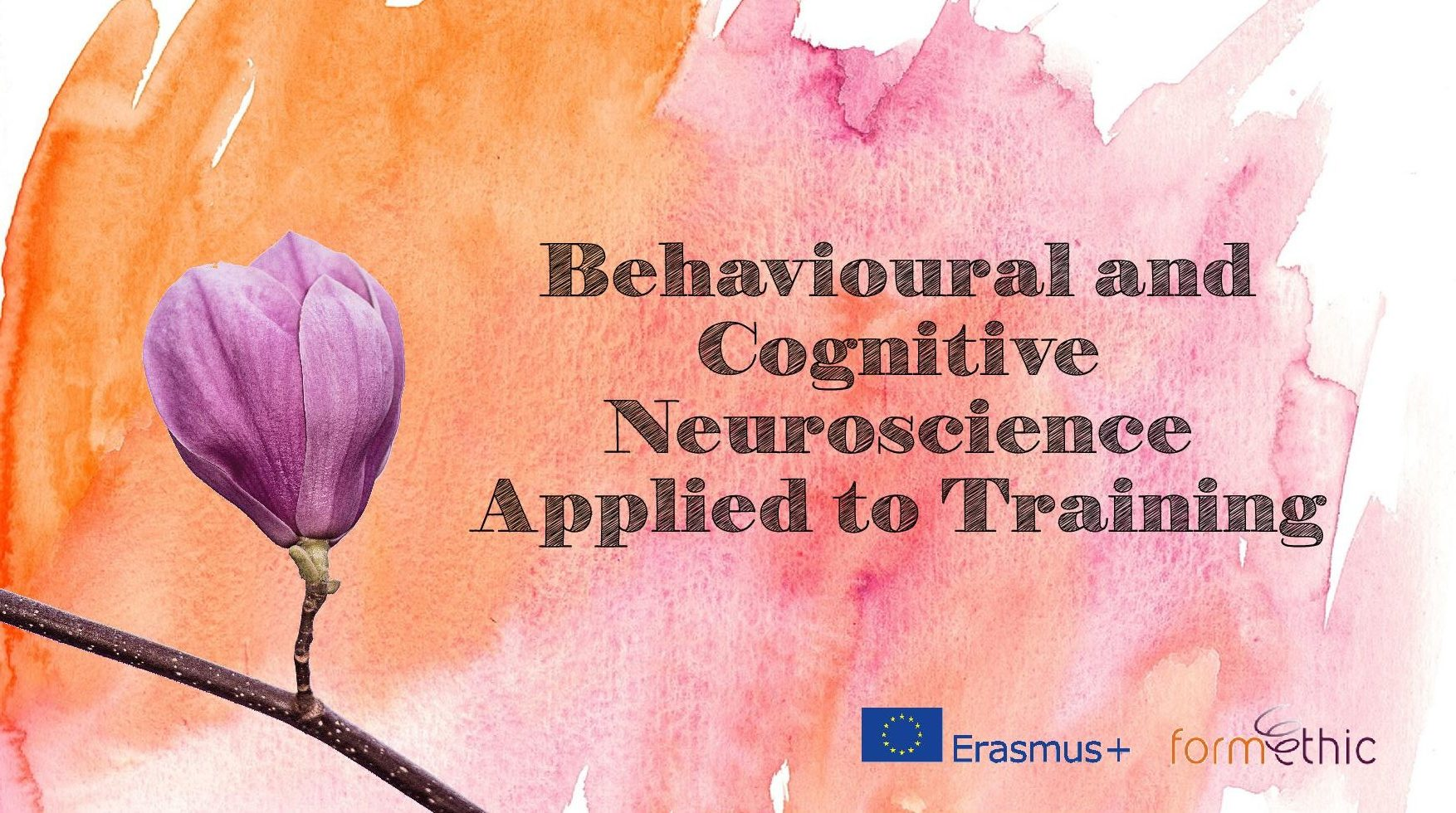 Behavioural and Cognitive Neuroscience Applied to Training